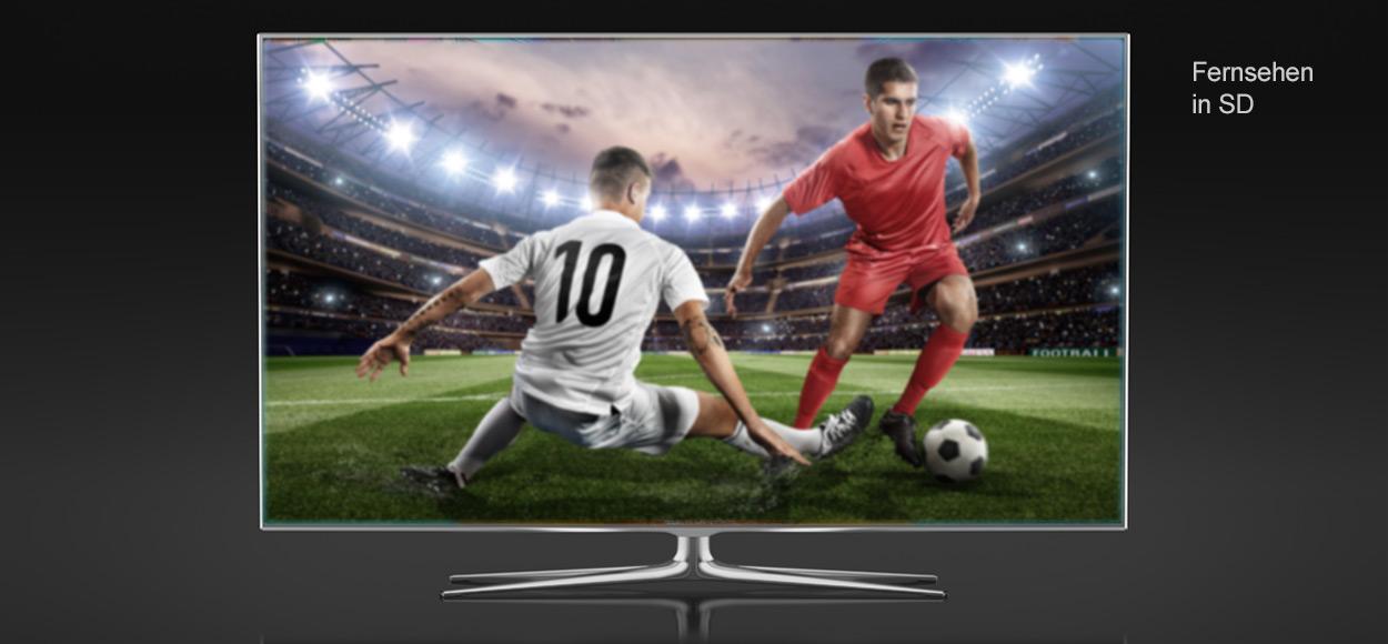 Fernsehen mit SD