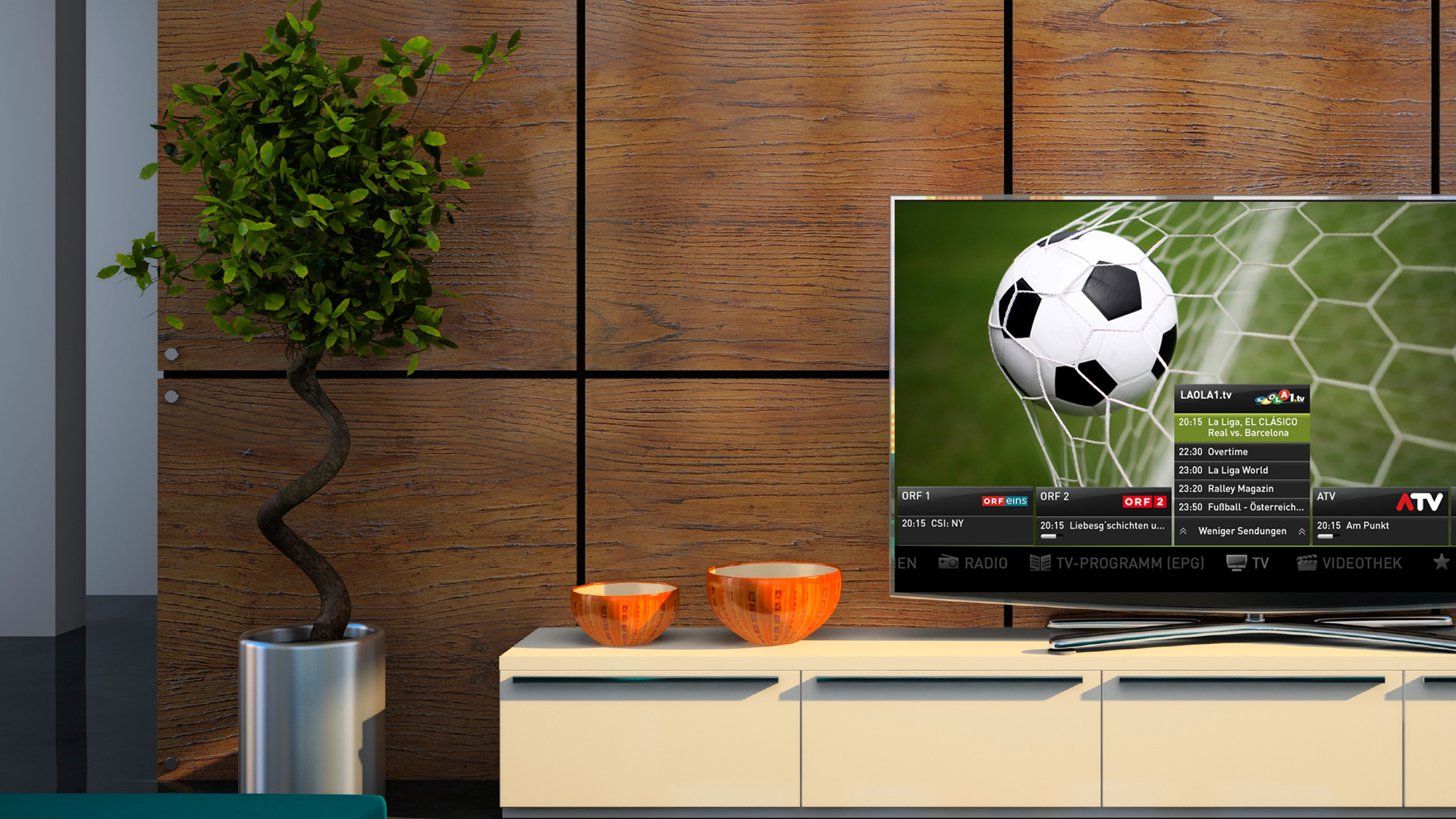 Fernseher Live-Übertragung Fußball
